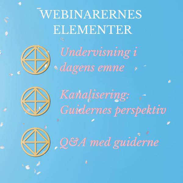 Manifestation med mening, Rie Jespersen, webinarernes elementer