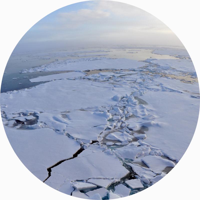 Isbryder Rie Jespersens formål og værdier